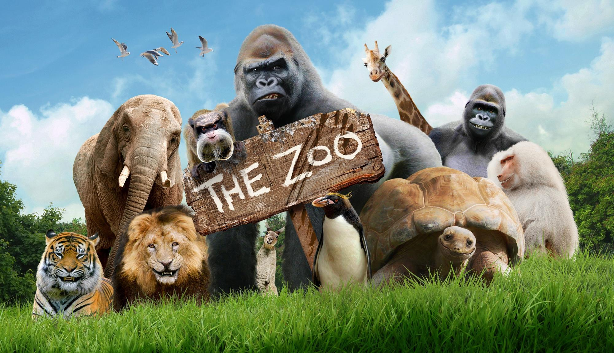 Zoo - HD2000×1151