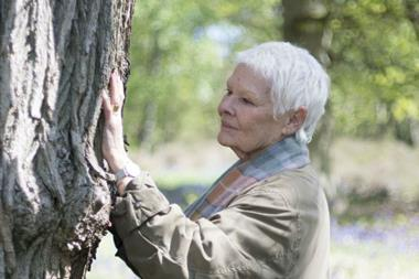 Judi dench trees