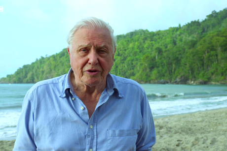 David attenborough screenshot 1