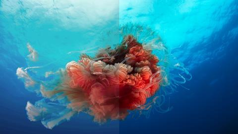 Simulated images for illustrative purposes only lion's mane jellyfish