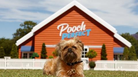 Seven Pooch Perfect