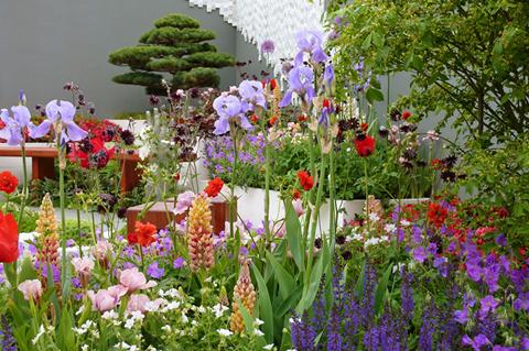chelsea flower show2