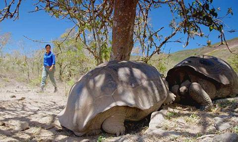Galapagos BBC series Atlantic Productions