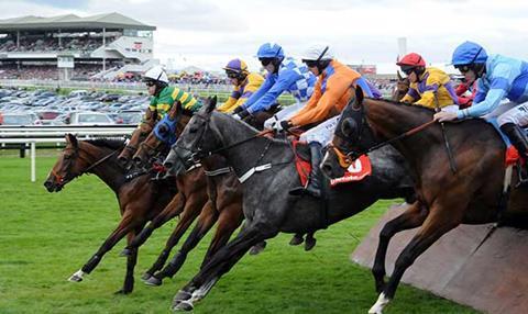 Galway horse racing