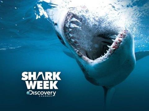 Shark-Week-2017