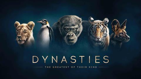 bbc iplayer dynasties