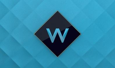 W_LOGO_BLUE_BG-low-res-2